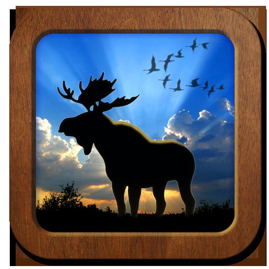 jagarexamen-ikon